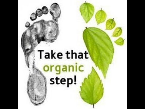 Corporate Webinar for Essante Organics December 2016 Laura