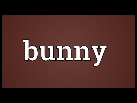 Bunny Meaning