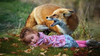 Родители плакали, когда узнали как им отплатила лиса за свое спасение.