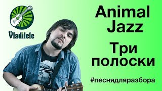 Animal Jazz - Три полоски (видеоурок, разбор на укулеле)