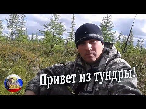 Привет из тундры. Туруханский район Красноярского края!