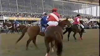 2005 Preakness Stakes (+Post-Race Results)