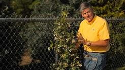 How to Train Jasmine on a Wire Fence : Garden Savvy