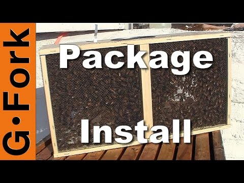 Beekeeping 101 Videos – How To Raise Bees