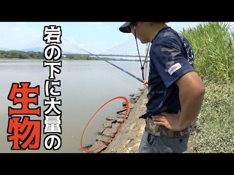 岩の下に潜む〇〇を釣り上げる!!