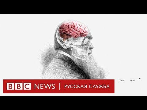 Теория эволюции Дарвина: