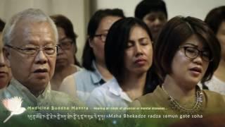 Video Medcine Buddha Mantra - Drukmo Gyal Dakini download MP3, 3GP, MP4, WEBM, AVI, FLV Maret 2018