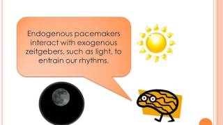 Endogenous pacemakers