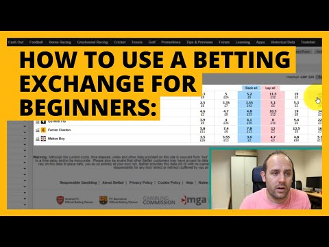 How to Use a Betting Exchange | Betfair Trading for Beginners