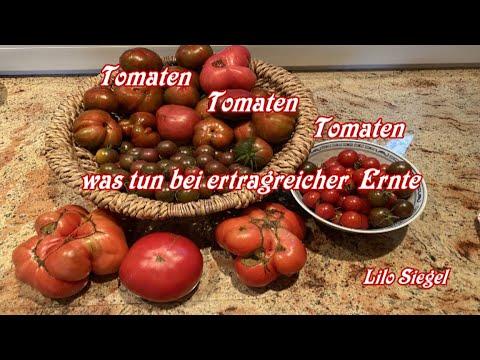 backofen-tomaten-schnell-und-köstlich---lilo-siegel
