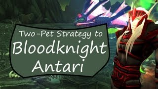 Bloodknight Antari: WoW Pet Battle Guide (Two-Pet)