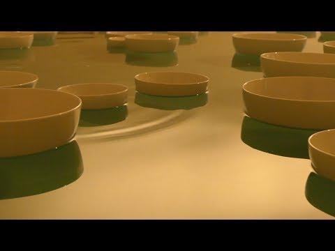 Céleste Boursier-Mougenot  - Variations