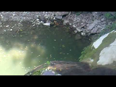 rio que divide hidalgo y puebla
