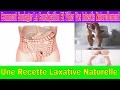 Comment Vider Vos Intestins Et Soulager La Constipation Naturellement