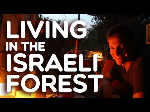 HOME - Living In The Israeli Forest (for 2 Years)