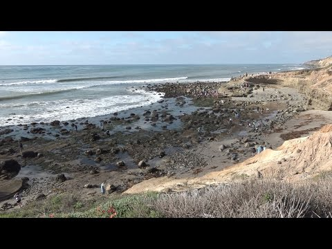 Cabrillo National Monument Tide Pools