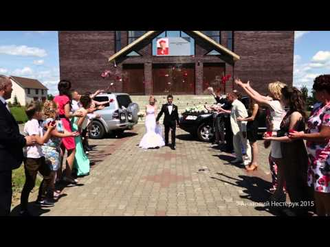 фотограф видеограф на свадьбу