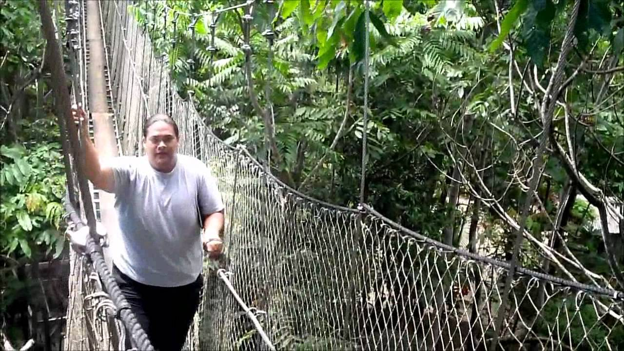sc 1 st  YouTube & Rainforest Canopy Walkway - Savaiu0027i Island Samoa - YouTube