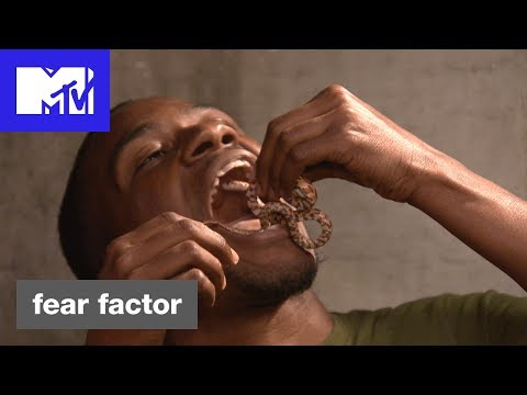 St  Louis MMA Fighter Gorges on Grossness on 'Fear Factor' This Week