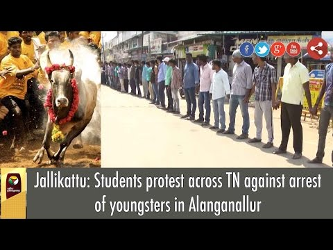 Jallikattu: Students protest across TN against arrest of youngsters in Alanganallur