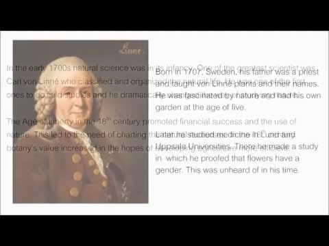 Carl von Linné - Carl Linnaeus