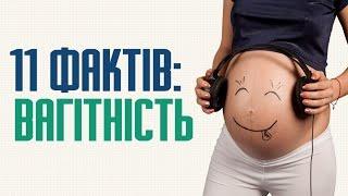 11 цікавих фактів про вагітність: статистика та наукові дослідження