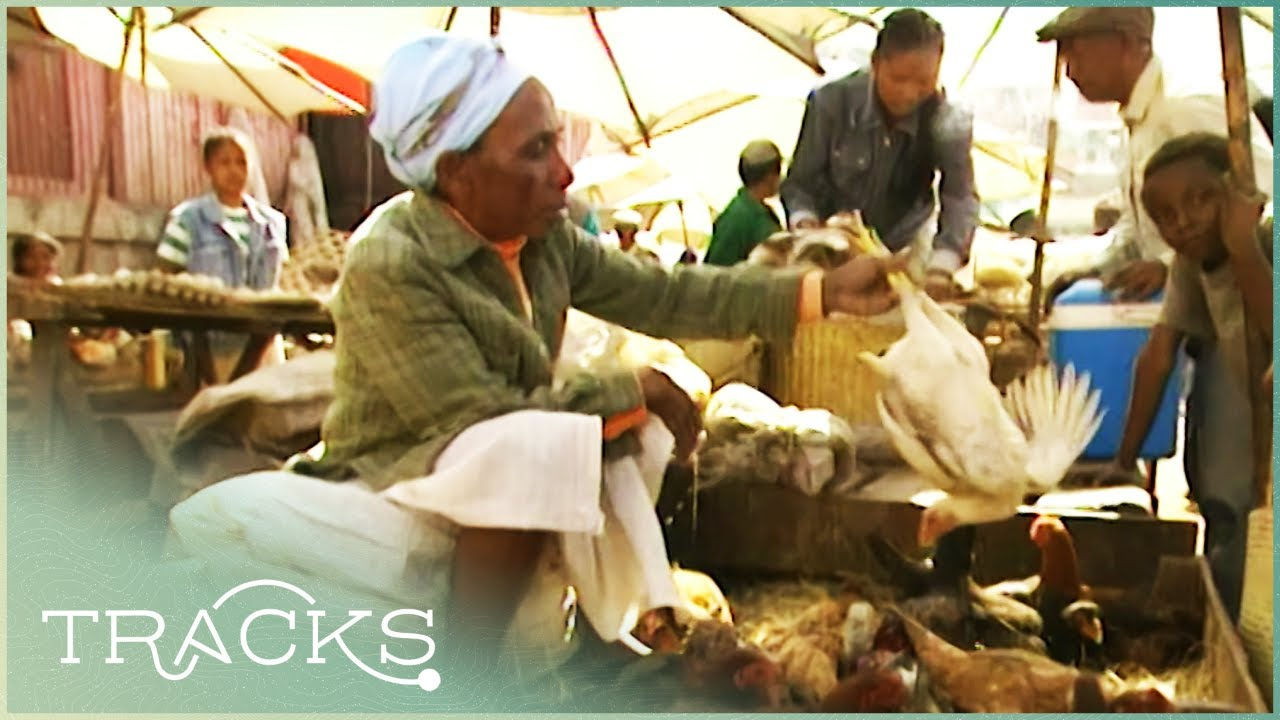 Life Around Madagascar's Food Markets   Floyd On Africa   TRACKS