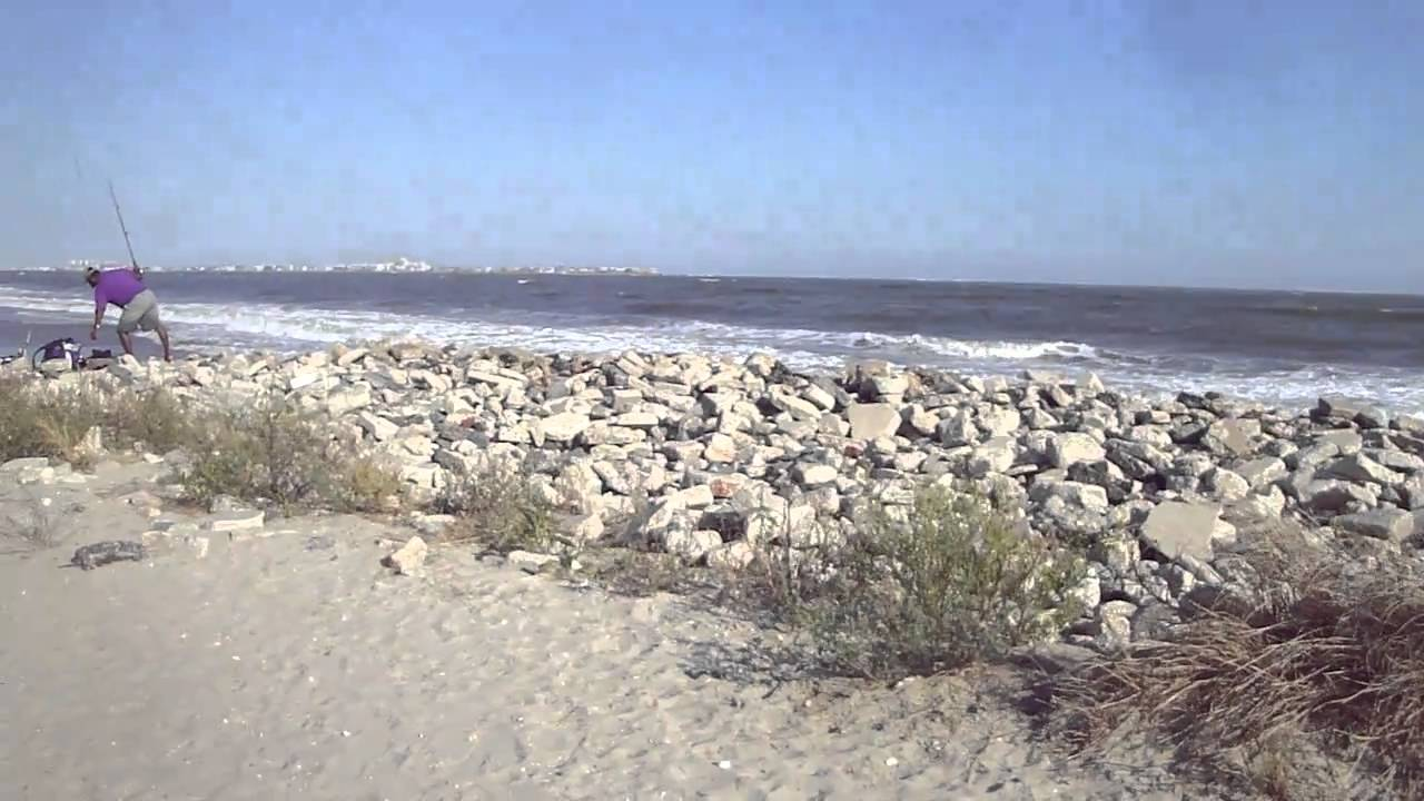 Longport Dog Beach