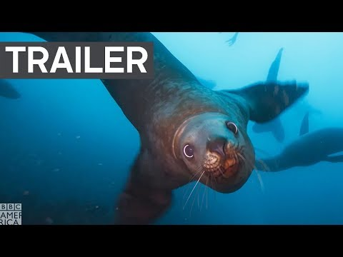 Planet Earth: Blue Planet II Trailer #2 | Coming in 2018 to BBC America