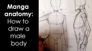 Manga anatomy : How To Draw Male Body FULL LESSON