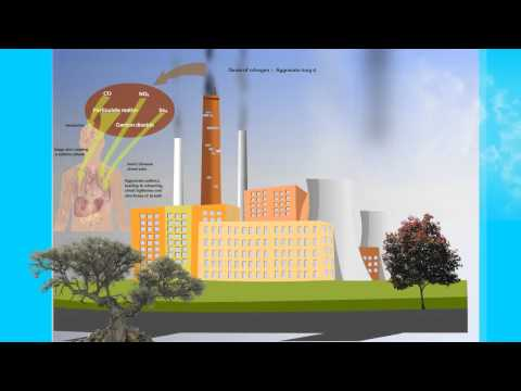 Air Pollution Control (CAP) Technology