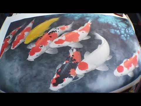 8 koi fish painting