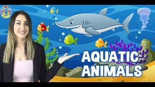 Kids Learn about Aquatic Animals
