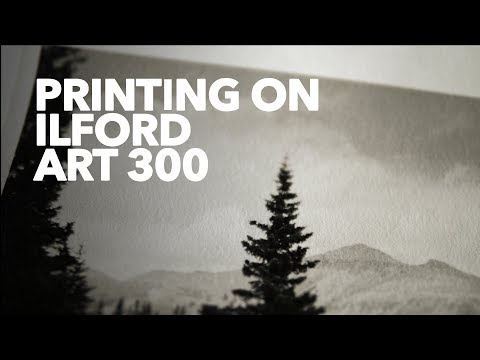 Darkroom Printing with Ilford MG Art 300 Paper