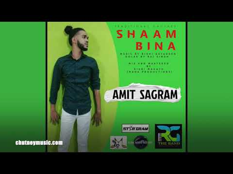 Amit Sagram - Shaam Bina (2020 Traditional Chutney Music)