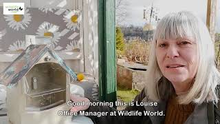 Wildlife World egern foderhus med kobbertag video