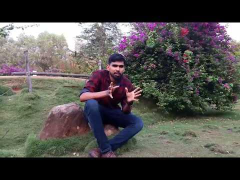 Noor Lake Tirur | green artificial forest