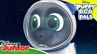 Puppies on the Moon! 🌙 | Puppy Dog Pals | Disney Junior Arabia