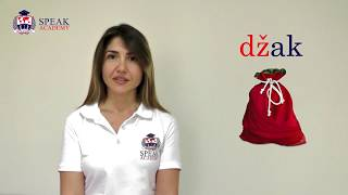 Serbian Lesson 1.2  - Division of voices - Serbian Language courses