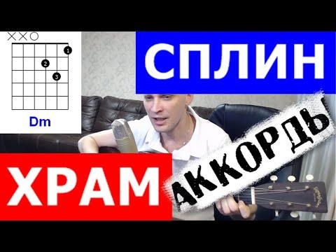 Сплин аккорды Храм 🎸 cover под гитару