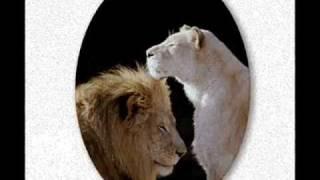 ONLY YOU  Shaggy ft Barrington Levy (ft Lyrics!) -- VERAMENTE...SOLO TU!!!