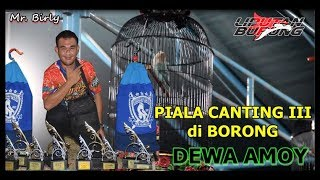 Video Piala Canting 3 di Borong Lovebird Dewa Amoy download MP3, 3GP, MP4, WEBM, AVI, FLV Juli 2018