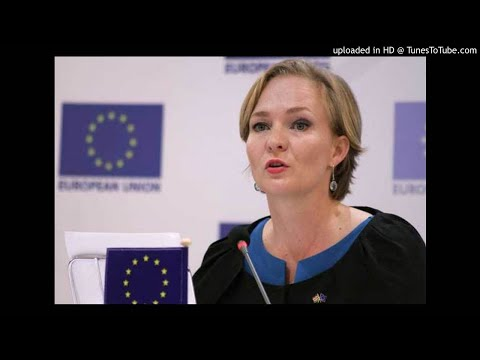 EU observers report on Kenya polls cites bribery, use of State resources