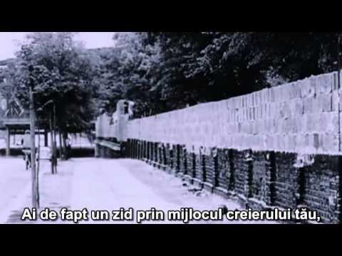 Exmatriculat: Inteligenţa Nu Este Permisă (Documentar)