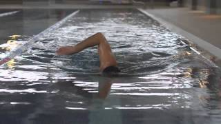 Front crawl Swimming technique - rolling the shoulders