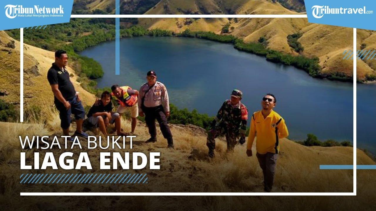 Bukit Liaga Ende, Wisata yang Suguhkan Spot Foto Latar Laut dan Bukit yang  Instagramble