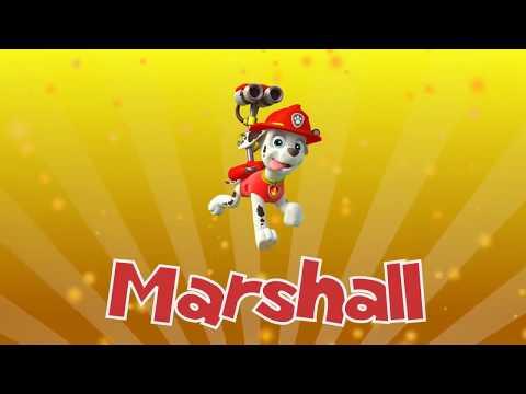 patrulha-canina---música-do-marshall---paw-patrol!