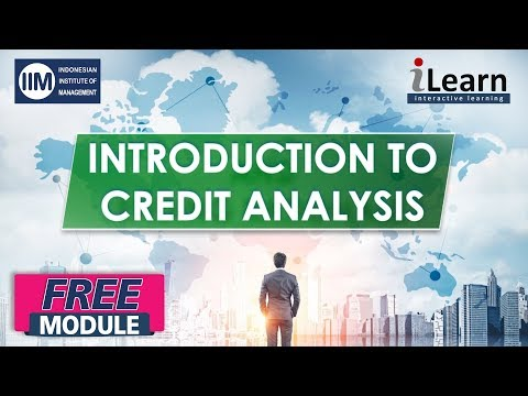 SUMMARY Introduction to Credit Analysis and Lending Rationale I