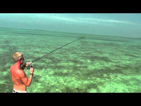 คลิปตกปลา