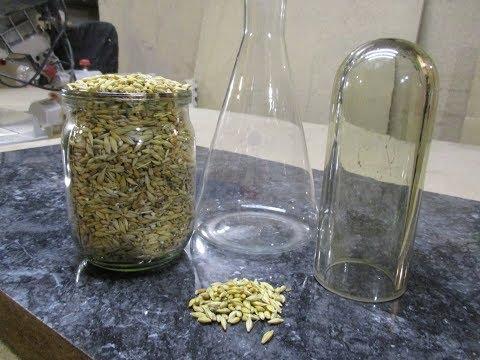 Как приготовить виды компоста в бочке и дома своими руками
